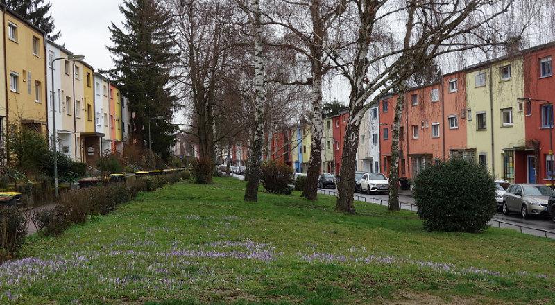 Praunheim